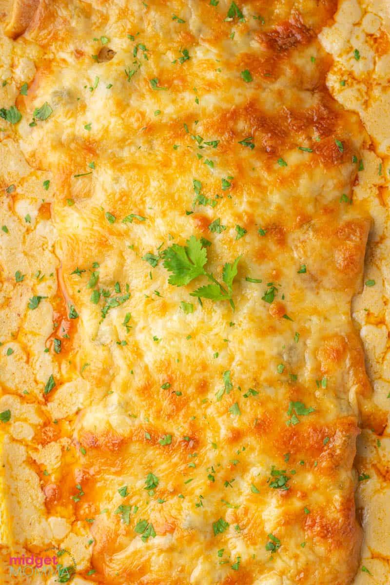 White Chicken Enchiladas in a baking dish