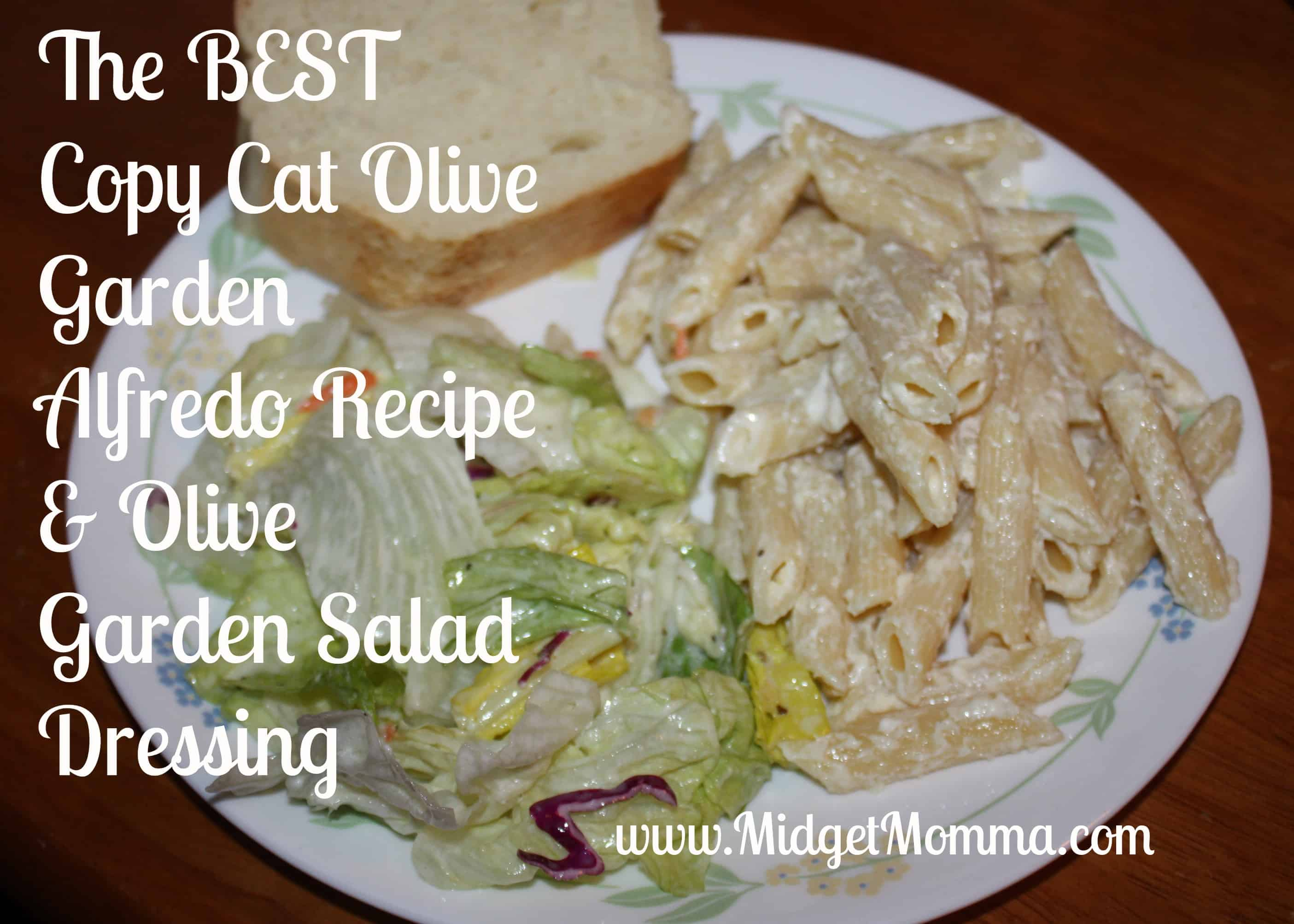 Olive Garden at Home: Alfredo Sauce & Salad dressing recipe ...