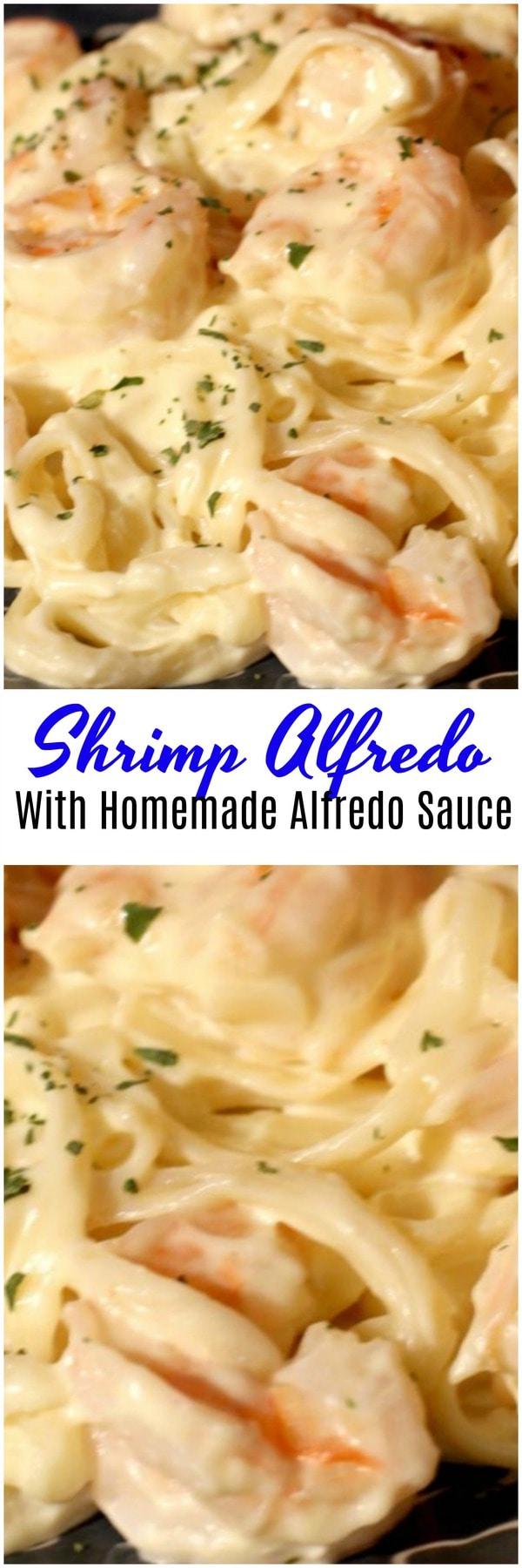 Shrimp Alfredo With Homemade Alfredo. Homemade alfredo sauce with shrimp. This copy cat olive garden Alfredo sauce is simple to make and tastes great.