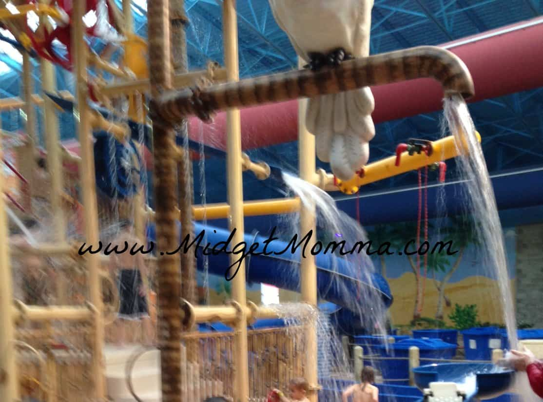 Splashin Fun all Year Round at Sahara Sams Oasis Indoor & Outdoor Water Park