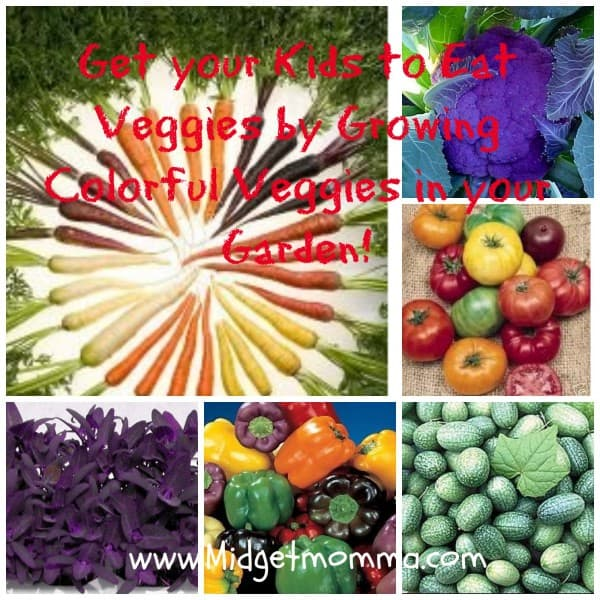 Fun With Veggies for Kids – Colorful Veggie Plant seeds!