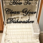 how to clean dishwasher. Step by step directions on how to get your dishwasher deep cleaned.