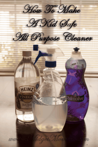 Homemade Kid Safe All Purpose Cleaner