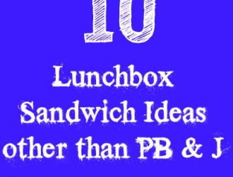 10 Lunchbox Sandwich Ideas other than PB & J