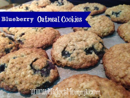 Blueberry oatmeal cookie recipe - Super easy to make and a great way to use all the blueberries that are in season during the summer