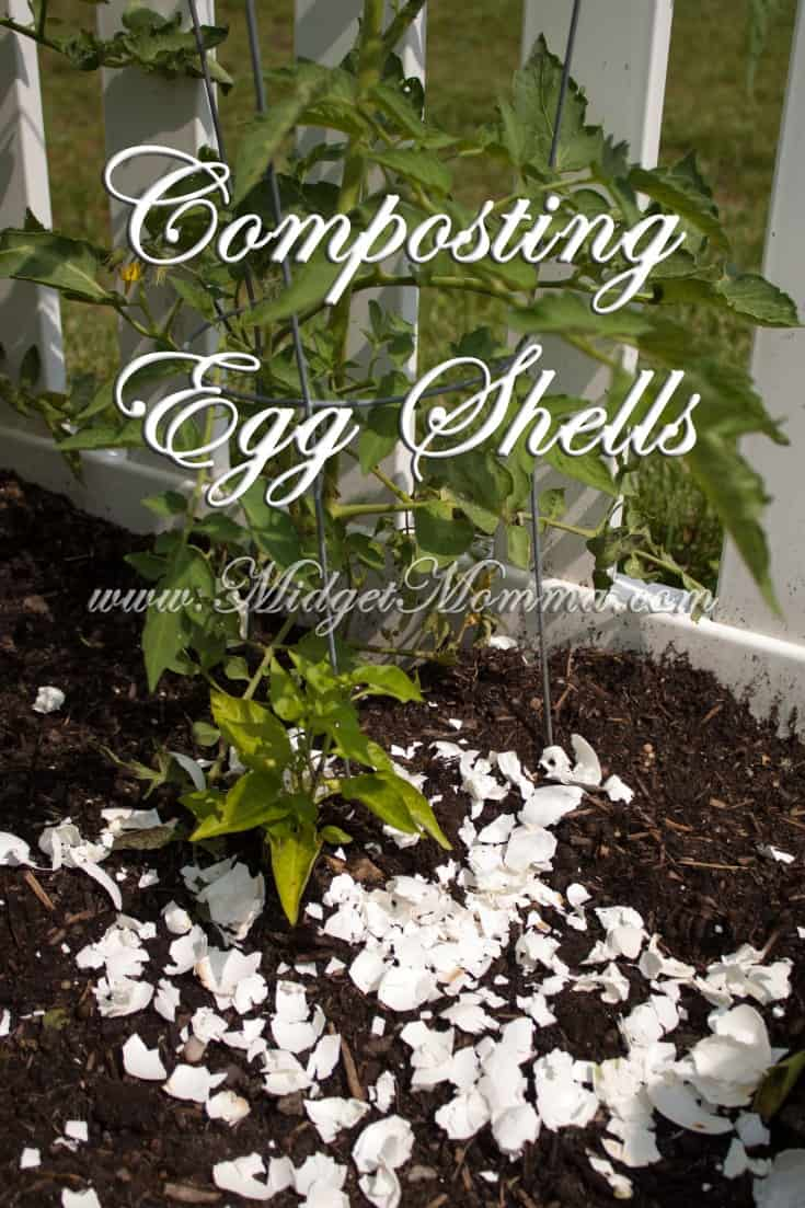 Composting Egg Shells to help your garden
