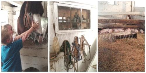 Quiet Valley Farm Barn