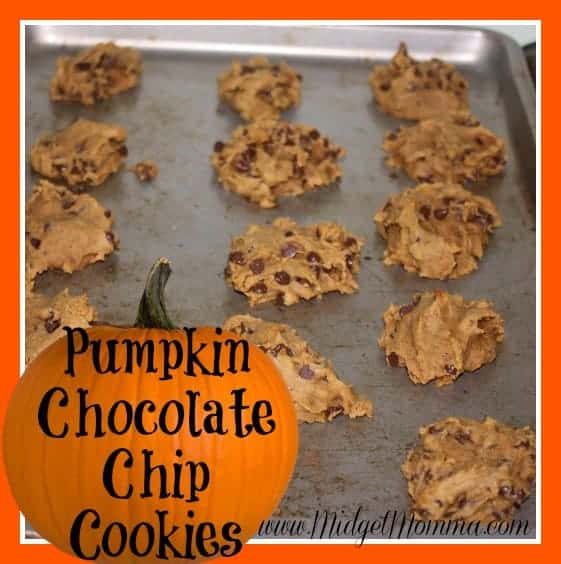 Pumpkin Chocolate Chip Cookies. The BEST Pumpkin Chocolate Chip Cookies EVER! You will never want another cookie after these Pumpkin Chocolate Chip Cookies