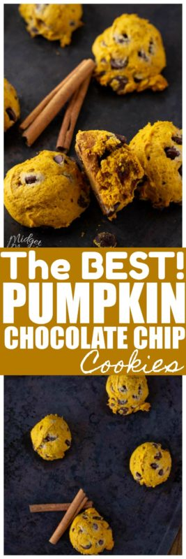 These soft baked pumpkin chocolate chip cookies are like little cookie pillows! They are seriously that soft and that amazing! Easy to make pumpkin cookie recipe, that is the perfect fall tradition! If you are looking for a pumpkin cookie recipe with out eggs then you are in luck with this amazing pumpkin chocolate chip cookie recipe! #SoftBakedCookie #PumpkinCookie #PumpkinChocolateChip