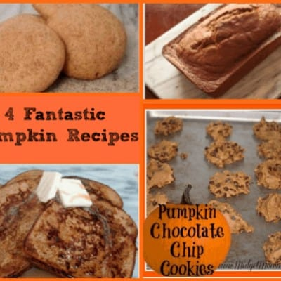 Here are four AWESOME Pumpkin Recipes that you are sure to love. Make sure you try them out this fall season or any other time of the year.