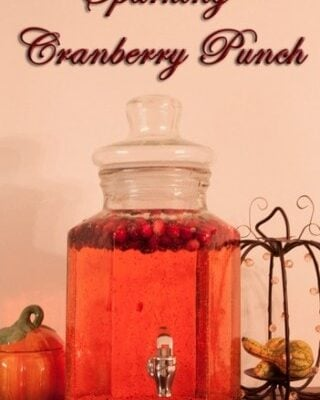 Sparkling Cranberry Punch is a bubble fun drink to serve this holiday season. It has this great taste like a cranberry sprite.