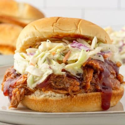pulled pork and slaw sandwich