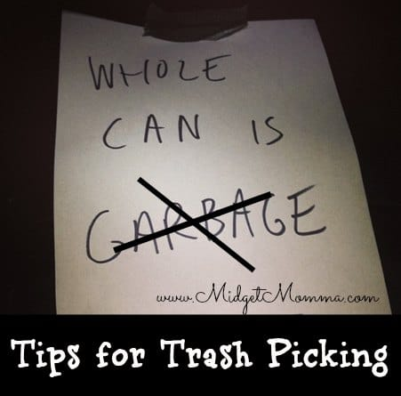 31 Way to Save $100 or More a Year: Trash picking (Day 22)