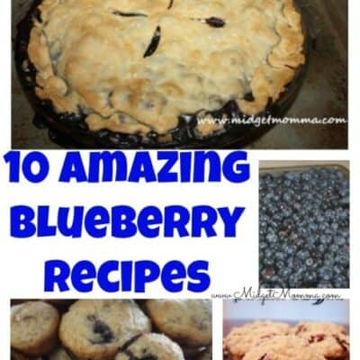 If you love blueberries than you are going to love this collection of Blueberry recipes! They contain everything from pies to muffins.