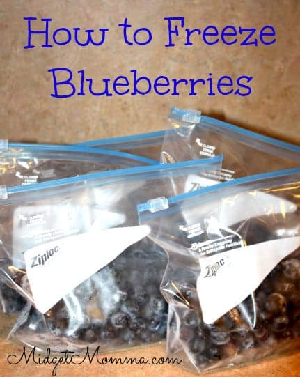 How to Freeze Blueberries, How to Freeze fresh blueberries, freezing blueberries, how to freeze fresh blueberries, easy way to freeze blueberries