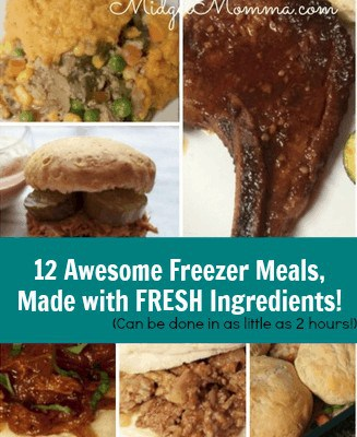 With this set of Freezer meals you will be able to make 12 healthy meals to have in your freezer in under 4 hours and all of them are from scratch.