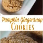 Pumpkin Gingersnap Cookie