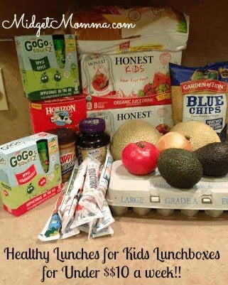 Healthy Lunch box Meals with Organic items for under $10 a week. They are so tasty your kids will not even know they are good for them.