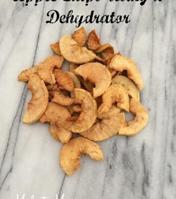 Make Apple Chips Using a Dehydrator is easy to do and a great healthy snack. Kids will love these crunch but sweet snack so try them today.