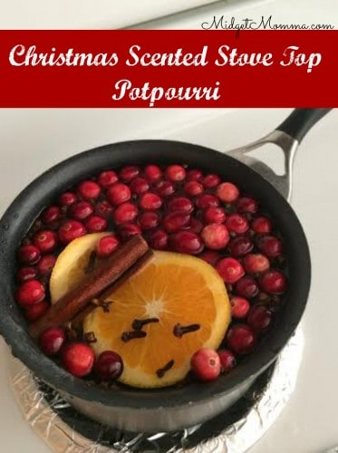 Christmas Scented Stove Top Potpourri
