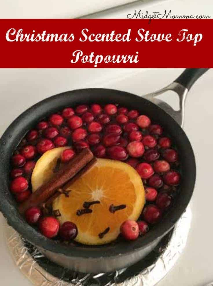 Grab our recipe for easy Christmas Scented Stove Top Potpourri!  This is a great way to make your whole home smell amazing for the holiday season!