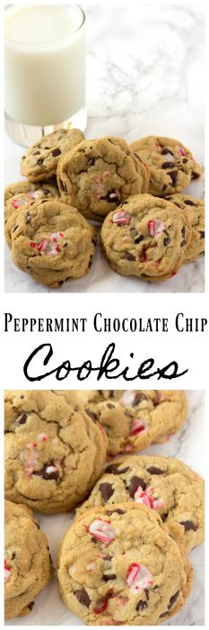 Homemade Peppermint Chocolate Chip Cookies that are perfect for Christmas. Easy to make peppermint cookies, that are soft and chewy with peppermint and chocolate chips. #ChocolateChip #peppermint #Cookies #ChristmasCookies #SoftChristmasCookies