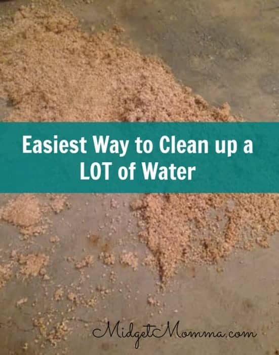 easy way to clean up a lot of water