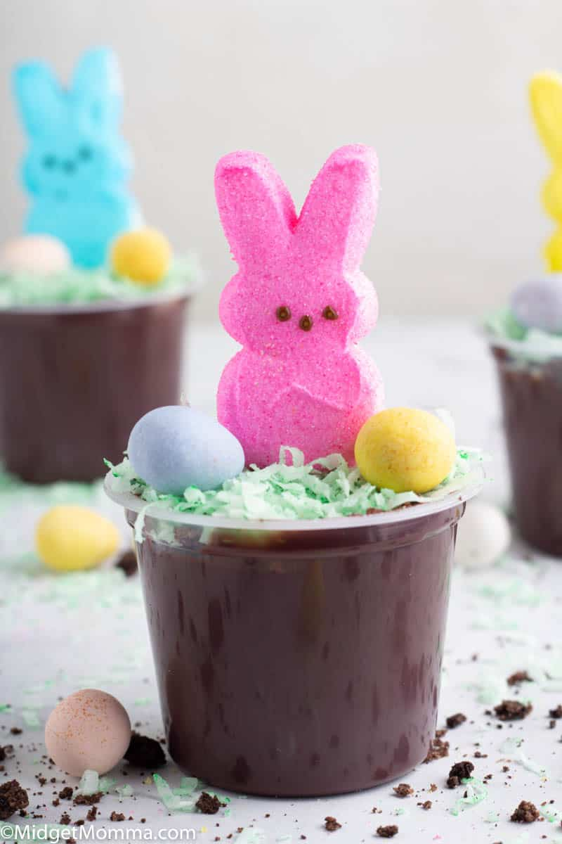 Pudding cup Dirt Cups