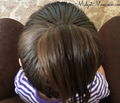 Bibbidi Bobbidi Boutique Princess Hair Tutorial pony