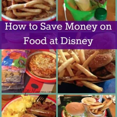How to save money on food at disney parks. List of all the tasty food that you can get on a budget at Disney World. Help you save money on food when you are eating in Disney world. Tasty Disney food that you do not want to miss when you are in Disney World.
