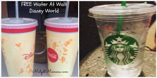 things you can get for FREE at Disney World free water