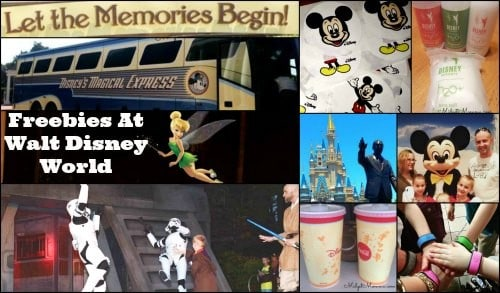Things you can get for FREE at Disney World