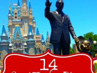 Secret Disney World Tips from Disney Cast members