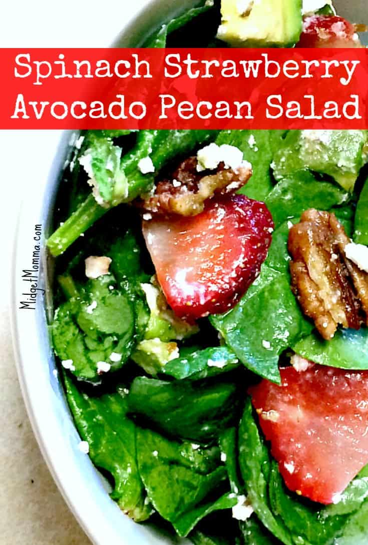 Spinach Strawberry Avocado Pecan Salad and Honey Poppy Seed Salad Dressing. Made with fresh ingredients including Spinach Strawberry Avocado and Pecans