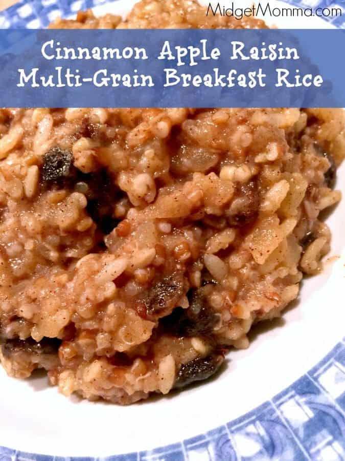 ... cinnamon apple raisin multi grain rice 1 container of brown wild rice