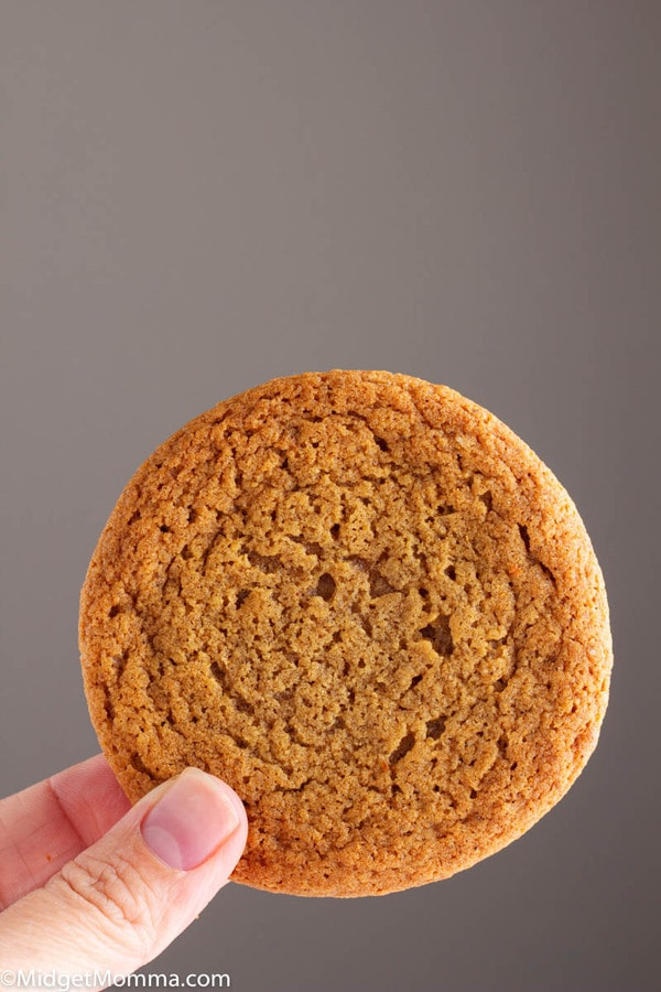 Ginger cookie being held in a hand with a bite out of it