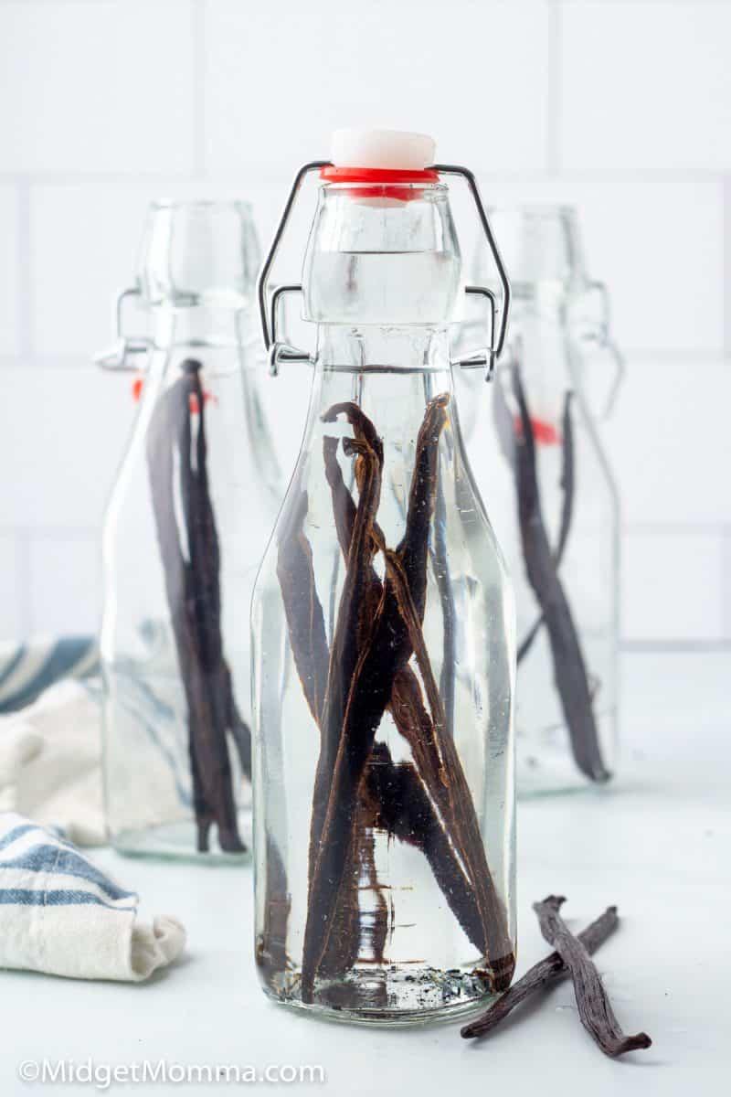 vodka in  a  jar with vanilla beans