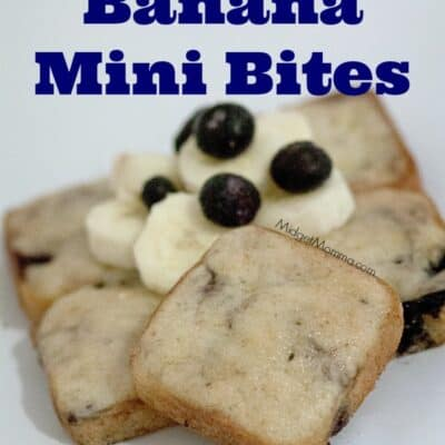"""Blueberry Banana Mini Bites are a great homemade option to the store bought """"Little Bites"""" You can make them at home however don't expect them to last long!"""
