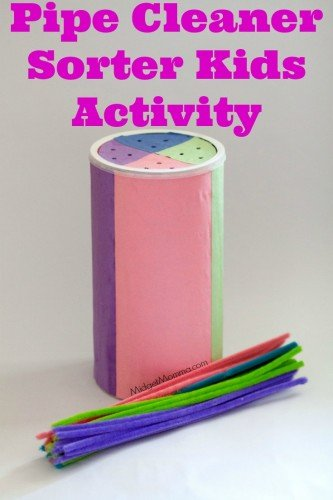 Pipe Cleaner Sorter Kids Activity