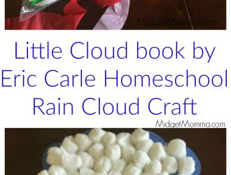 Little Cloud book by Eric Carle Homeschool Rain Cloud Craft