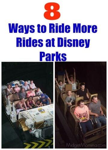 Disney Park Rides