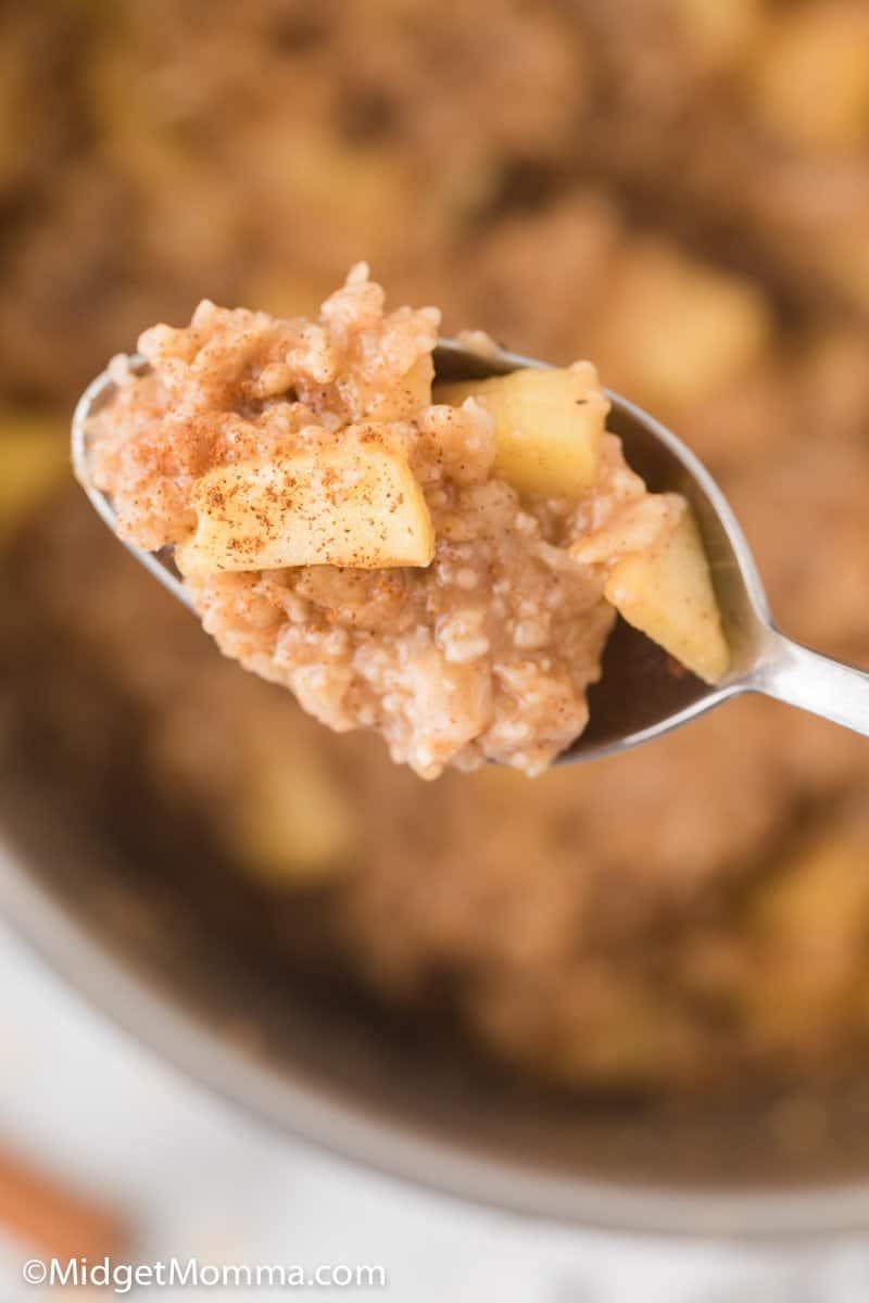 spoonful of Apple Cinnamon Oatmeal