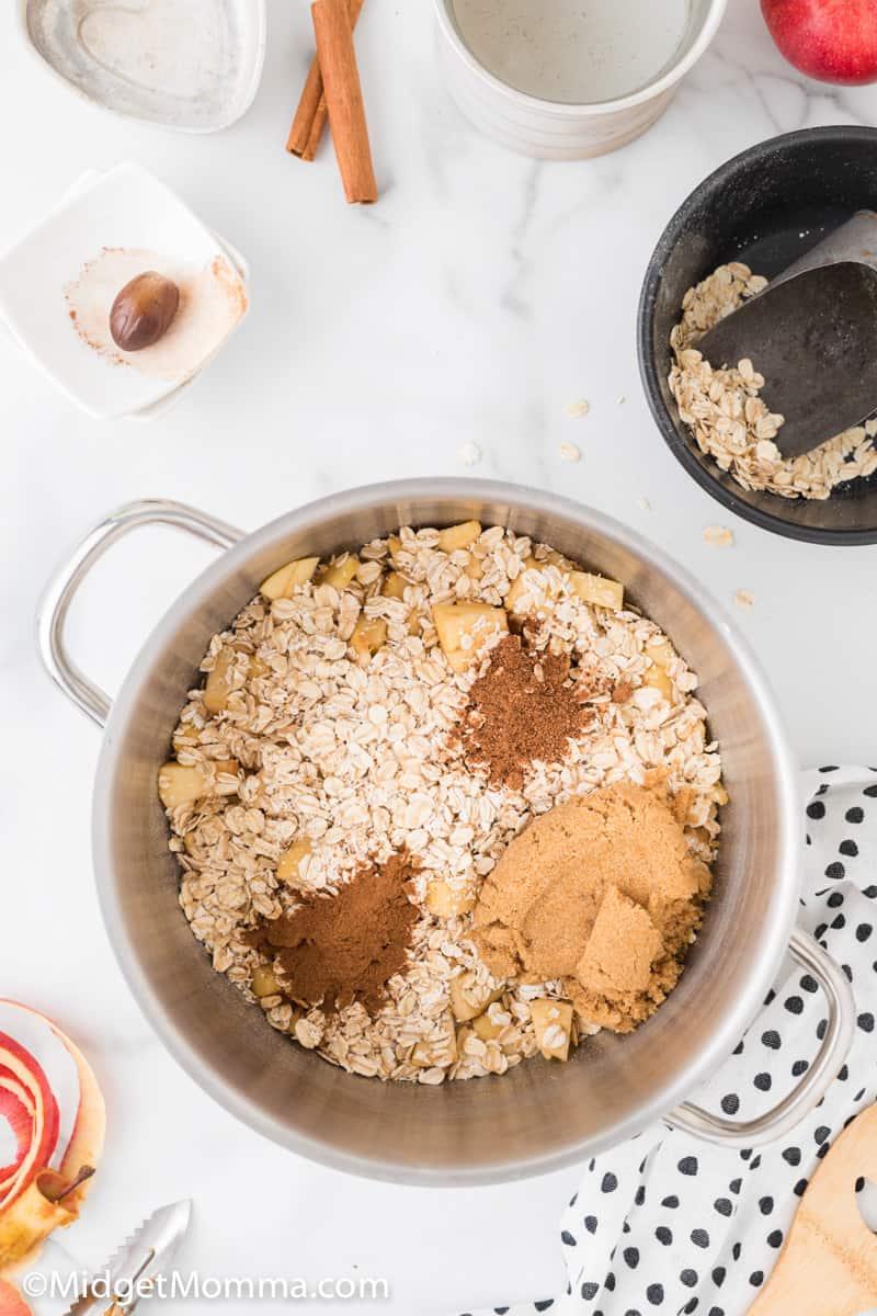 apples, water, oats, cinnamon, nutmeg, brown sugar together in a medium saucepan