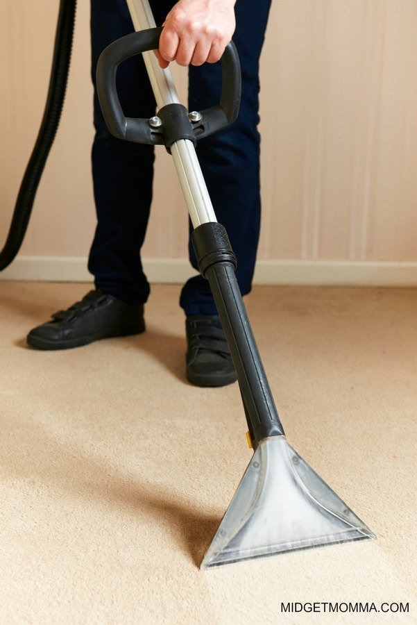 carpet cleaning with borax