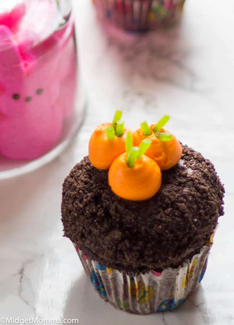 Garden Carrot cupcake