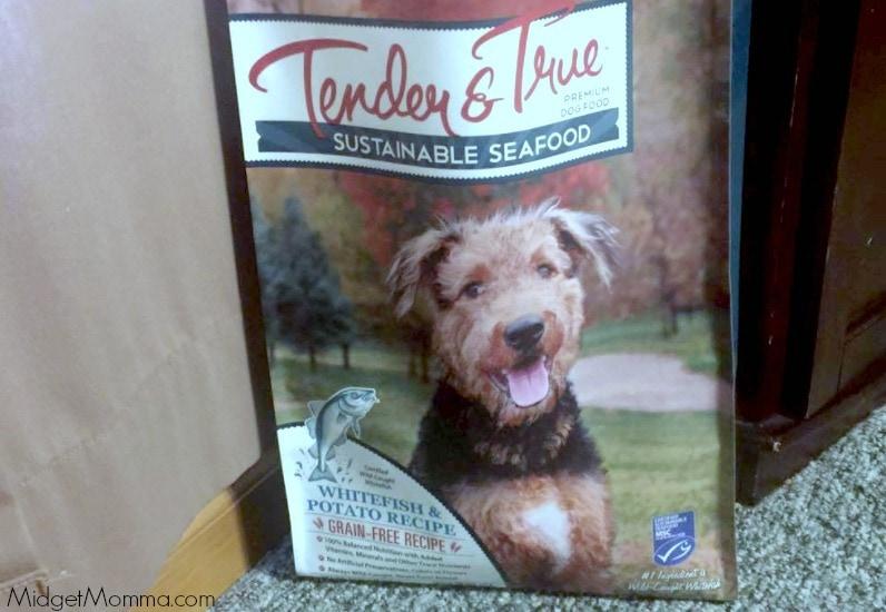 Natural Organic Pet Store Middlebury Ct