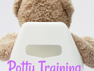 Potty Training Tips So You keep Your Sanity!