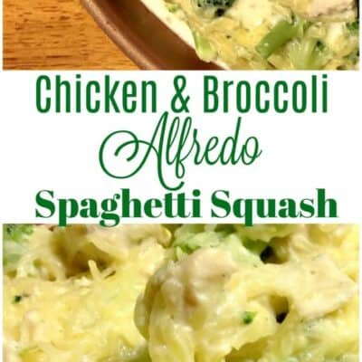 Spaghetti Squash Chicken and Broccoli Alfredo. Spaghetti Squash Alfredo, low carb alfredo dinner. Easy Spaghetti Squash Chicken and Broccoli Alfredo