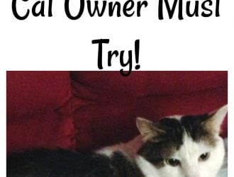 3 Feliway Cat Products Every Cat Owner Must Try!