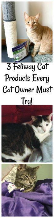 Maintenance Cat Food Costco Making Cats Sick